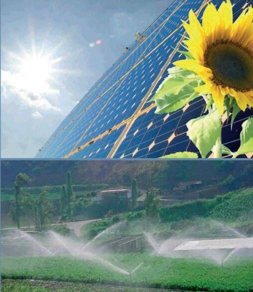 Солнечная панель LP-M-120-H-330W/5bb Японский бренд