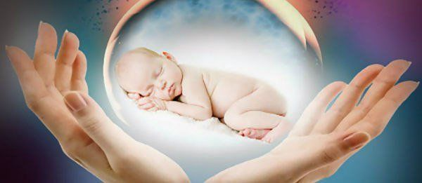 Работа донора яйцеклетки