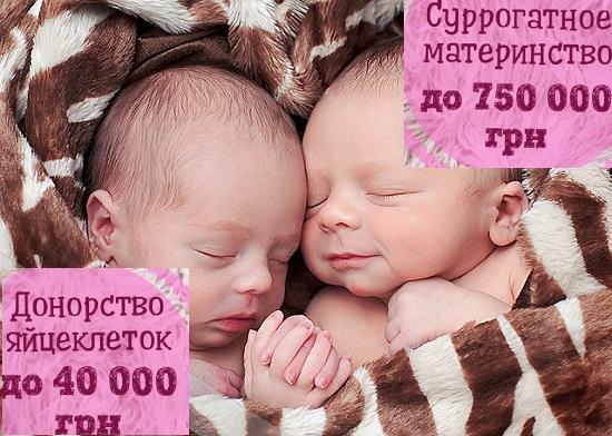 Стать Донором яйцеклеток Борисполь.