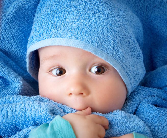 Программа суррогатного материнства, Волноваха