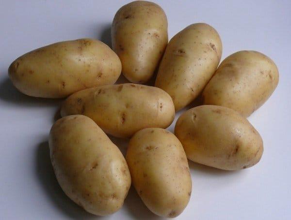 Картофель ранний, среднеранний сортовой посадочный :Киранда, Киви, Королева Анна  и др