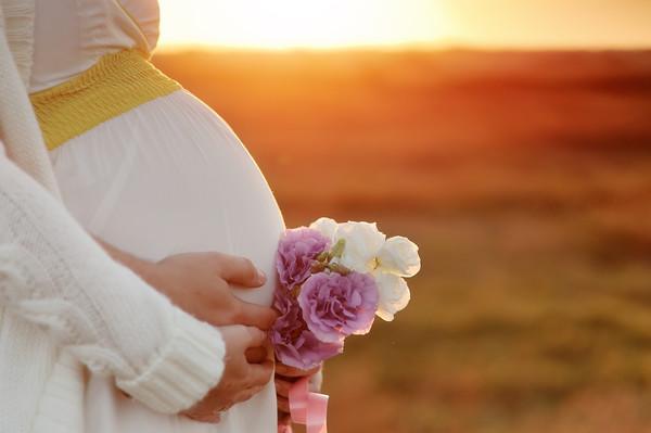 Программа суррогатного материнства, Мирноград(Димитров)