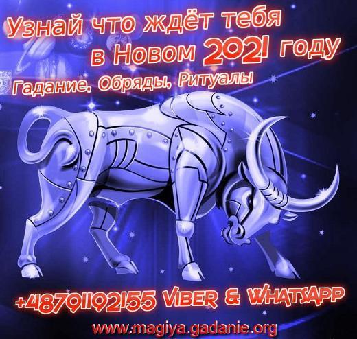 Новогоднее Гадание +48791192155