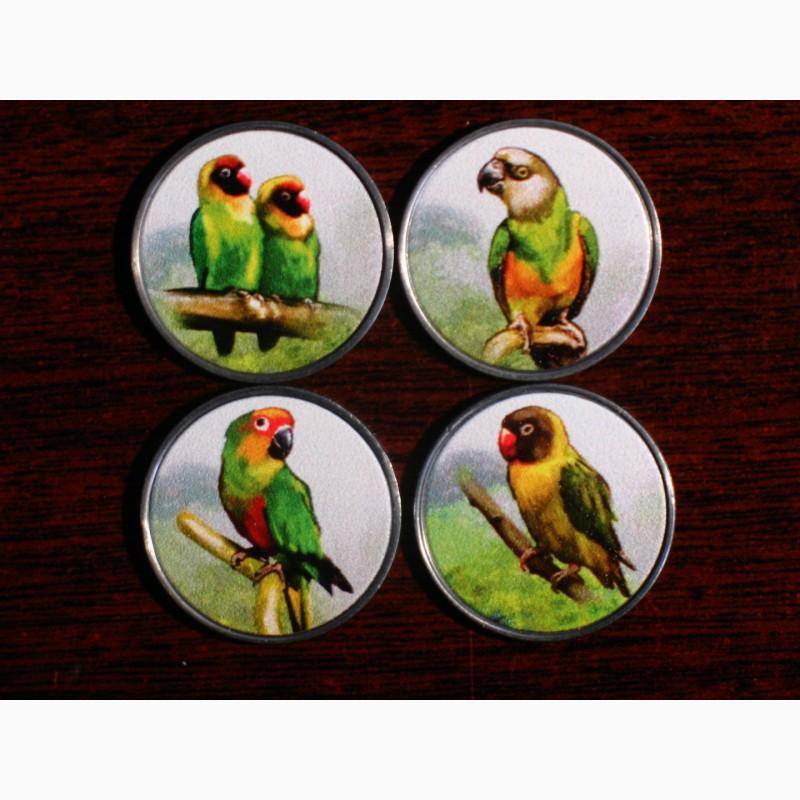 Набор монет Попугаи 2020 Сомали