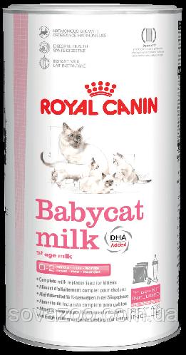 Замінник молока Royal Canin Babycat Milk Роял Канін Бейбікет Мілк для кошенят 300 г