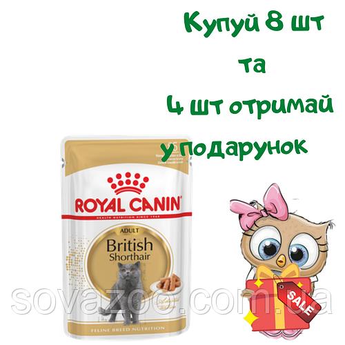 Вологий корм Royal Canin British Shorthair 85 г 8+ 4 набор