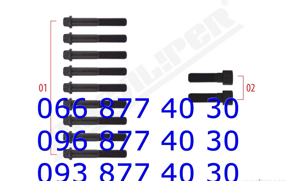 Болт крышки суппорта MERITOR ELSA/CLISA M14 x 1,5 x 90 mm, FRE20-25067
