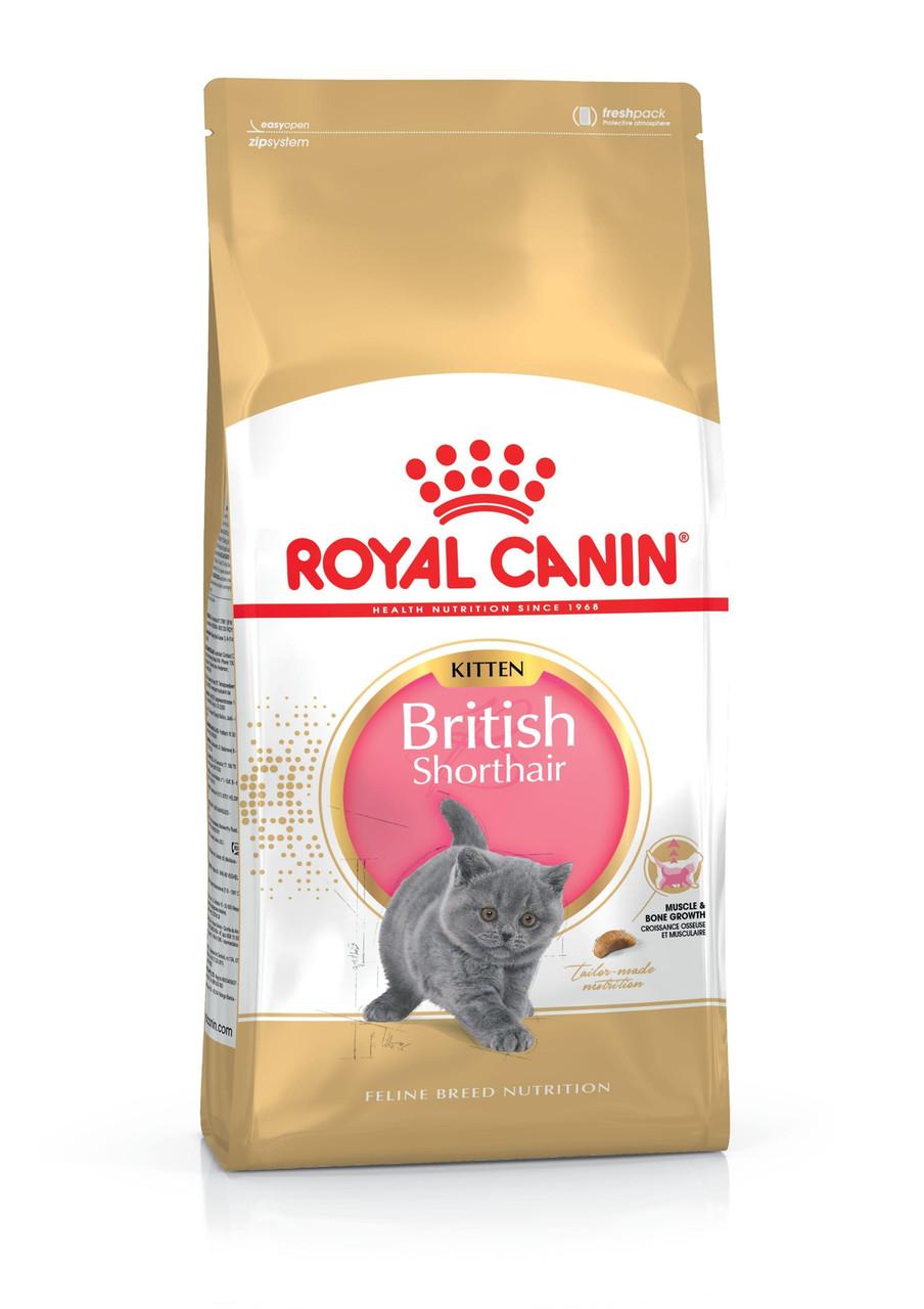Сухой корм для котят Royal Canin BRITISH SHORTHAIR KITTEN ( Роял Канин ) 0.4, 2, 10 кг. 2