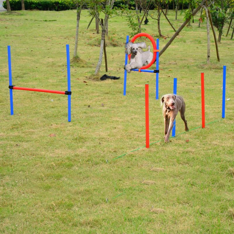 Наборы для тренировки собак Pawhut