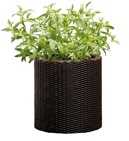 Горшок для цветов 7 л. Cylinder Planter Small, коричневый
