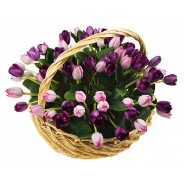Корзина с тюльпанами 2